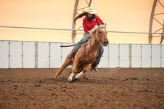 Taylor (wysharp) Tags: barrelracing cowgirl horse