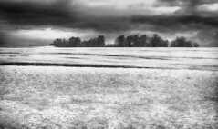 Untitled (RogelSM) Tags: outdoor bw idaho snow landscape