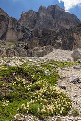 Sotto la nuda roccia (cesco.pb) Tags: valdifassa dolomiten dolomiti dolomites alps alpi trentino italia italy catinaccio canon canoneos60d tamronsp1750mmf28xrdiiivcld montagna mountains