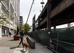 Demolition dog walk (WSDOT) Tags: seattle gp construction wsdot alaskan way viaduct replacement demolition 2019