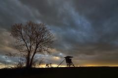 Hochsitz (rolandwittenberg) Tags: hochsitz jägerstand harzvorland wetter regen regenwetter abendstimmung