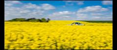 ALPINE RENAULT A110 1600 S (1972) (Laurent DUCHENE) Tags: tourauto car classiccar automobile automobiles auto motorsport peterauto historicrally historiccar 2018 alpine renault a110 1600 s
