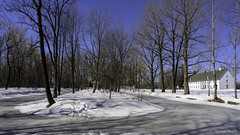 Le Domaine de Maizerets (richard.hebert68) Tags: nikon z6 2470mmf4 paysage bleu ciel arbre forêts domainemaizerets québec canada