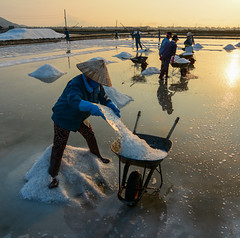 People working on salt field at summer (phuong.sg@gmail.com) Tags: agriculture aquaculture basket burden cambodia crops day farm farmer fields hard hardship harvest hat hot indochina industry life light load ocean people pile poor road salt sea seafood shoes shoulder sky spices storage summer sunny sunshine sweat sweaty thirsty unit vains vietnam vietnamese walk wander women work worker