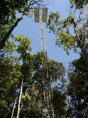 Tanguro tower . . . (ericrstoner) Tags: peld fazendatanguro tanguroranch tanguro woodsholeresearchcenter whrc ipam institutodepesquisaambientaldaamazônia fluxtower eddycovariancefluxtower eddyfluxtower eddycovariance
