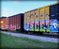 (timetomakethepasta) Tags: acet th doos woody woodpecker freight train graffiti art cartoon railbox boxcar