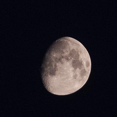 I typically prefer primes, but it's hard to not be impressed with this Fuji XF 18-135mm zoom! This was a handheld shot at 135 . . . . . . . ********* #moon #moonshot #lunar #nofilterneeded #zoomlens #impressed #cameragear #fujifilm #myfujifilm #fujifilm_x (IAMLESHER Photography) Tags: ifttt instagram i typically prefer primes but it's hard be impressed with this fuji xf 18135mm zoom was handheld shot 135 moon moonshot lunar nofilterneeded zoomlens cameragear fujifilm myfujifilm fujifilmxseries fujifilmxus fujixlovers fujifeed myfujilove xt3 instagood artofvisuals fujifilmglobal fujifilmnorthamerica