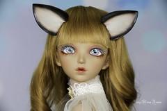 Siamese cat set SD (AnnaZu) Tags: cat set siamese sd ears tail felting wool minifee alicia annazu annaku doll fairyland polymer clay commission vesnushkahandmade magnetic