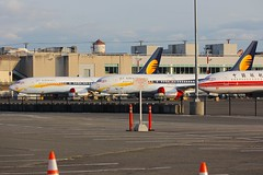 B737 VT-JXH + VT-JXF Boeing Field Seattle 23.03.19 (jonf45 - 5 million views -Thank you) Tags: king county international airport airliner civil aircraft jet plane flight aviation seattle airways liveried boeing 7378 max vtjxh vtjxf b737 737