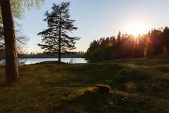(Øyvind Bjerkholt (Thanks for 80 million+ views)) Tags: sunflare sunset grass stub landscape nature trees water lake scenery sørsvann arendal norway canon