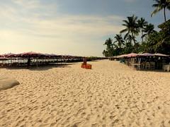 IMG_3473 (craigharrisnelson) Tags: hua hin thailand beach hut restaurant chairs umbrellas sand trees palm