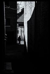 2019-03-21-Jodoigne-76Pt (Pontalain) Tags: architecture black blackandwhite building darkness home house labels light monochrome monochromephotography photograph photography room shadow sky snapshot street style tintsandshades tree white window contrejour ruelle silhouette jodoigne brabantwallon belgique