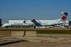 C-GGNY (Air Canada express - JAZZ) (Steelhead 2010) Tags: aircanada aircanadaexpress jazz yyz bombardier dhc8q400 creg cggny