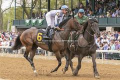 Tyler Gaffalione (Casey Lynn Photos) Tags: keeneland 2019 2019copyright kentucky horse horseracing racehorse racing track racetrack canon canonphotography canonusa canon7dmii canonlens canonphoto canoncamera
