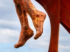 Golden feet (Bradverts) Tags: wood sky outdoors nature architecture old starfish tree echinoderm horizontal heyshamvillage lancaster england europe northerneurope britishculture humanleg nopeople uk builtstructure nonurbanscene buildingexterior day