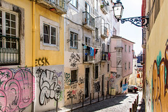 Wall Art or Graffiti _7944 (hkoons) Tags: iberianpeninsula cityscape officebuildings capital city europe lisbon people portugal tree abode alley alleyway architecture building buildings commercial community folklore folks graffiti growth home house housing lamp landscape offices outdoors outside plants population rentals residence residency residential roof shops steps street tenancy tenants tile town traditions trees urban vegetation village