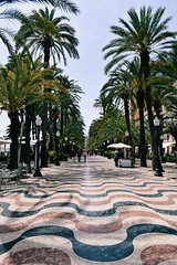 (╰☆Kristen) Tags: alicante spain españa mediterranean costablanca nikon nikond3300 nikonphotography europe travel landscape laesplanada