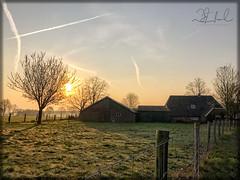 Holten Farm Sunrise