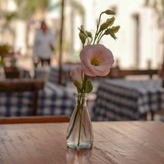 Ciudad Vieja - Montevideo - Uruguay (Irene Carbonell) Tags: ciudadvieja montevideo flores flowers calles street 35mm
