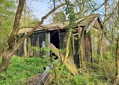 Derelict Chapel (R~P~M) Tags: church chapel tintabernacle methodist corrugatediron ruin deralict abandoned brickworks calvert england bucks buckinghamshire uk unitedkingdom greatbritain