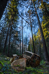 Vår/Spring (MIKAEL82KARLSSON) Tags: vår spring ue sverige sweden car bil rust rost skog sony sigma forrest urbanexplorer utforska explore find junk decay abandoned mikael82karlsson