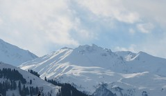 Sunshine on mountains (solarisgirl) Tags: kalga himachalpradesh snow white mountain peak sunshine sunrise trees