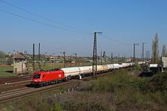ÖBB 1116 268 mit Gaskesselzug in Köthen (M. Eisenmann) Tags: zug eisenbahn öbb taurus