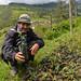 Plantones de regeneración natural de especies nativas en el vivero comunal de Kiuñalla, Apurímac para restaurar los bosques de la comunidad.