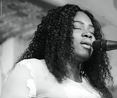 Djene Kouyate (lechatrave) Tags: acousticguitar finejazz