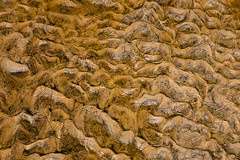 Another Planet? (J McCallister) Tags: creek mud patterns water