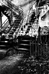 Les ombres et la lumière s'amusent avec le décor... (woltarise) Tags: iphone7 appartement escaliers lumières ombres 6h30am quartier plateau montréal