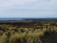 North Kona Coast (Kelson) Tags: hawaii coast lavarock ocean northkona