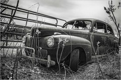 Ford - HFF (A Anderson Photography, over 3.4 million views) Tags: ford auto happyfencefriday canon mono sepia fence gate cloudy v8