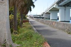 DSC_0092 (Wesh-Cacahuete) Tags: okinawa asie asianfood soleil vacances