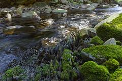 Bergmannsumpf (michaelmueller410) Tags: stones rocks water stream creek erosion schiefer moss moos wasser bach söse bachlauf slate felsen steine schieferplatten harz germany