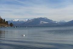 Lake Annecy @ Petit Port @ Annecy-le-Vieux (*_*) Tags: april spring printemps 2019 europe france hautesavoie 74 annecy annecylevieux savoie lakeannecy lacdannecy lac lake petitport