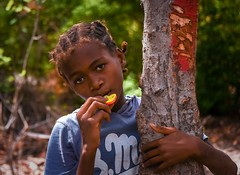 Village Girl (Rod Waddington) Tags: africa afrique afrika madagascar malagasy girl culture cultural child village candid trees trunk red toy