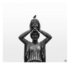 El protagonista / Main actor (K_BAU) Tags: bird pajaro teatro mascara