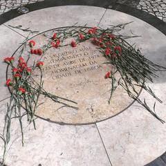 Les oeillets du 25 avril in Lisbon (ARnnO PLAneR) Tags: oeilletsdu25avril 25deabril portugal lisbon lisboa lisbonne fêtenationale