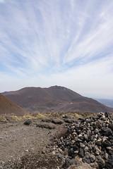 20190416a73_7239 (Gansan00) Tags: ilce7m3 α7ⅲ sony japan 大分 oita 日本 九重連峰 登山 landscape snaps ブラリ旅 04月 fe24105f4 trekking travelphotography