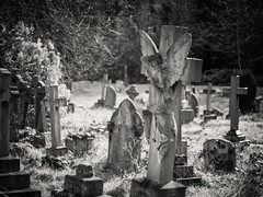 20190304-0424-Edit (www.cjo.info) Tags: 1830s 1836 19thcentury bw england europe europeanunion lambeth london m43 magnificent7 magnificentseven magnificentsevengardencemeteries microfourthirds nikcollection olympus olympuspenfgzuikoautos40mmf14 olympuspenf penfmount silverefexpro silverefexpro2 southmetropolitancemetery unitedkingdom westnorwood westnorwoodcemetery westerneurope angel animal architecture art blackwhite blackandwhite blur bokeh carving cemetery classical column corinthian cross decay digital fauna flora focusblur girl gravegraveyard manualfocus monochrome mythicalcreatures neoclassical overgrown people plant sculpture shallowdepthoffield statue stone stonework wingedcreature woman