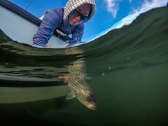 G0020386-Edit-1 (Woozy Fishing) Tags: eastgreenwich rhodeisland unitedstatesofamerica