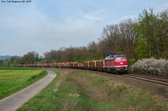 232 690 EBS bei Herzberg 24.04.2019 (Falk Hoffmann) Tags: diesellok eisenbahn güterzug bahnhof dr reichsbahn ebs ludmilla br132 br232 telegraphenmast