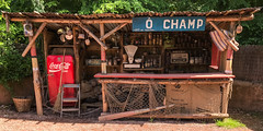 O Champ (CFotoPassion) Tags: auchan iphone 7 champ