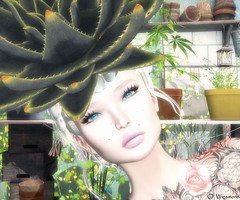 You Lost Me (Ombrebleue Winsmore) Tags: chopzuey jewel jewels fashion couture hat whitewidow tattoo ink colors roses love lelutka mesh head maitreya body glam affai skin applier lumipro spot spots light lights lighting projector boon hair bun blond