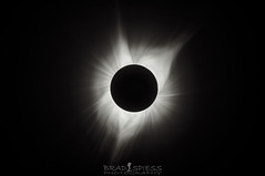 The Sun Flower (ihikesandiego) Tags: blackandwhitephotography 2017 solar eclipse