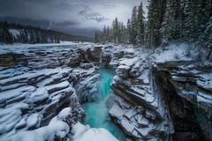 Athabasca falls (Toni_pb) Tags: athabasca falls canada rockies water nature landscape nikon d850 1424