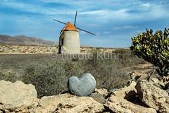 Molinos @ Fuerteventura (Kühr N.) Tags: globalheartart herz steinherz stoneheart fuerteventura canaryislands molino windmill landschaft landscape nature natur windmühle sunlight stone stones spain spanien