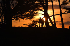 Walkin' the Dog (Damian Gadal) Tags: wilcoxproperty douglasfamilypreserve santabarbara california sunset silhouette