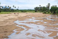 DSC00410 (b kwankin) Tags: africa landscape mwagusiriver ruahanationalpark tanzania